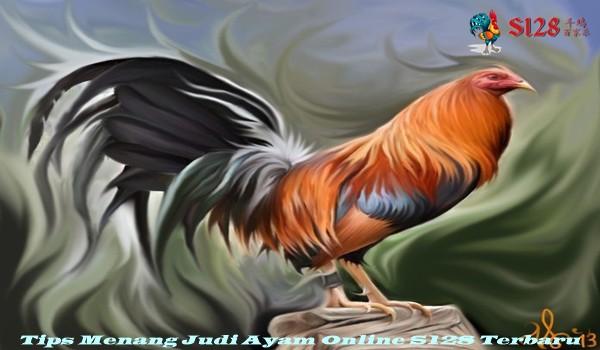 Tips Menang Judi Ayam Online S128 Terbaru